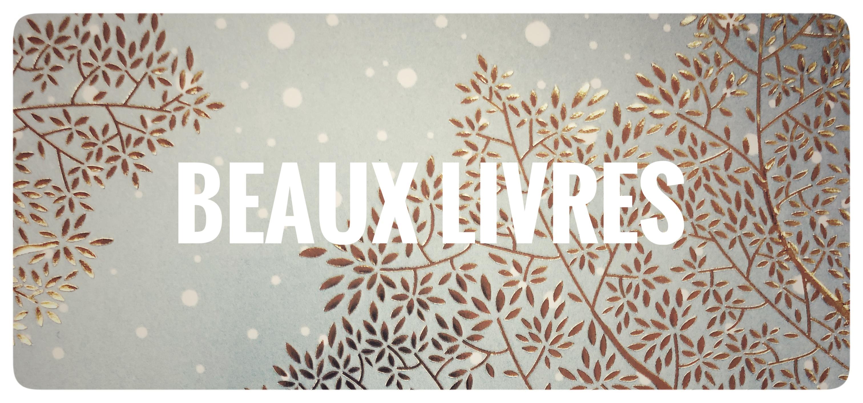 https://gestion.librairiejeancalvin.fr/themes/default/img/accueil/Noel_2020_beaux_livres.jpg