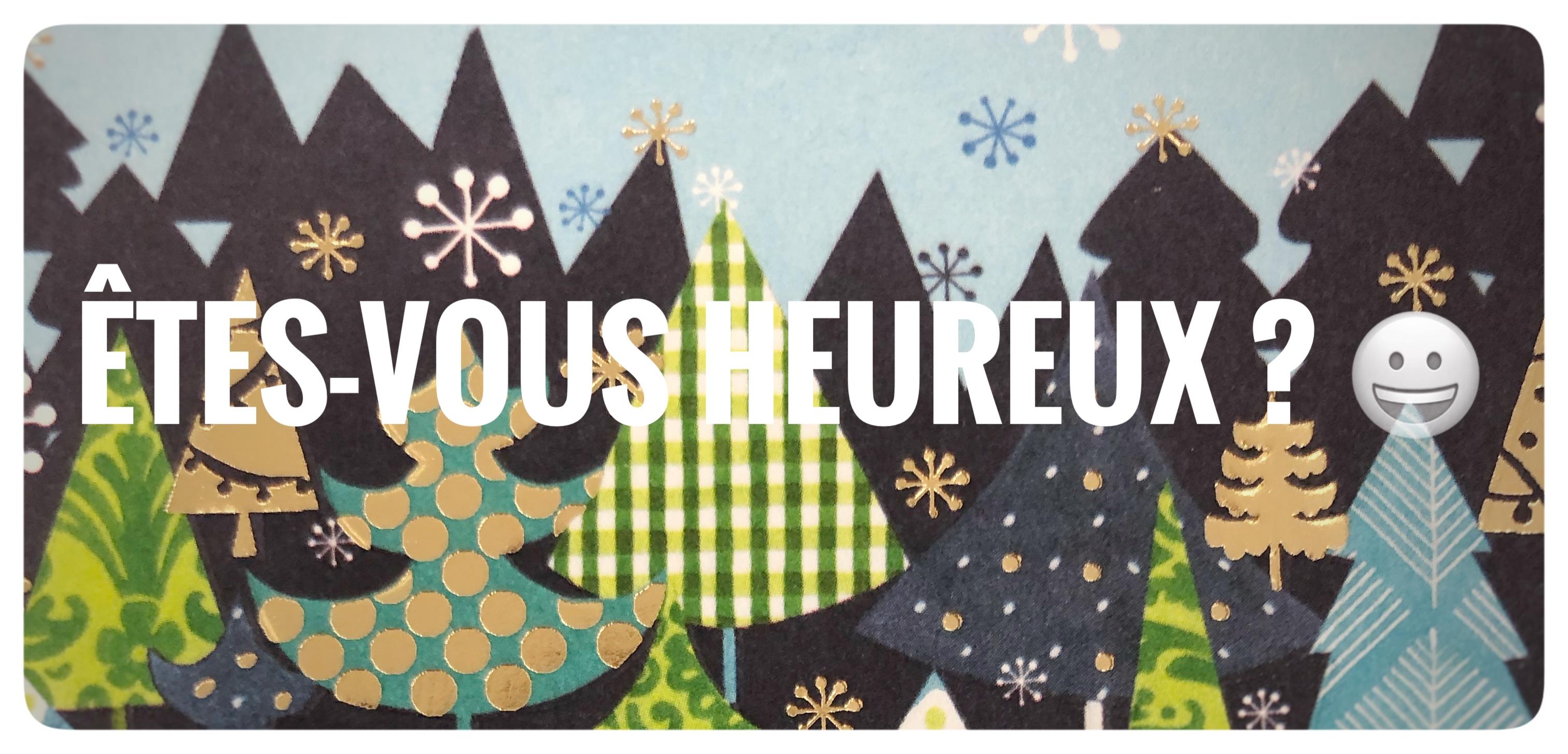 https://gestion.librairiejeancalvin.fr/themes/default/img/accueil/Noel_2020_etes_vous_heureux.jpg